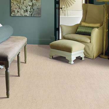 Caress Carpet by Shaw in Lynnwood, WA