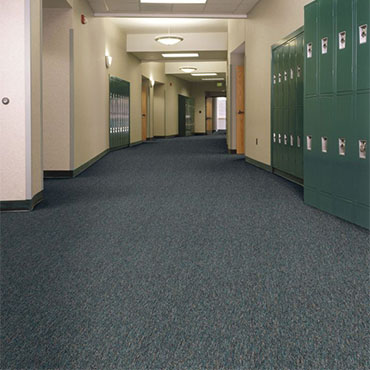 Philadelphia Commercial Carpet | Lynnwood, WA